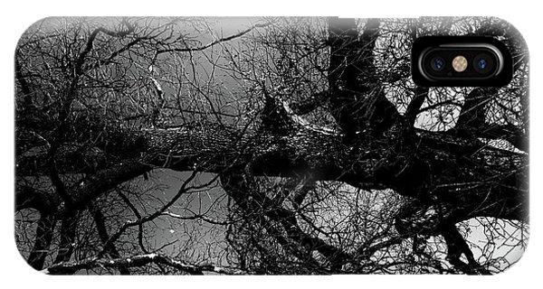 Fallen Dark Wood Forest IPhone Case