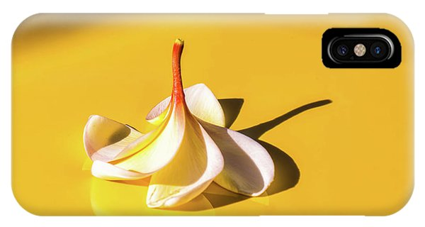 Fallen Frangipani On Mustang IPhone Case