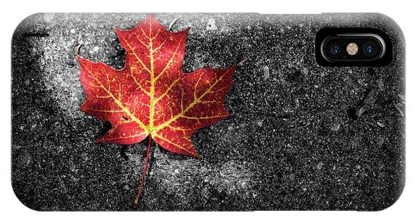 Fallen Leaf IPhone Case