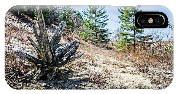 Fallen Tree At Warren Dunes IPhone Case