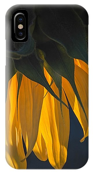 Falling Yellow  IPhone Case