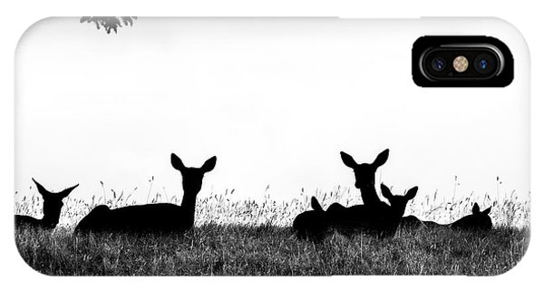 fallow Deer Phone Case by Yorkshire In Colour
