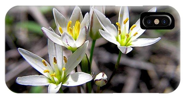 False Garlic Wild Flower IPhone Case