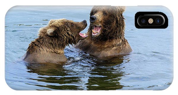 Bear Creek iPhone Case - Family by Chad Dutson