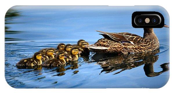 Family Swim IPhone Case