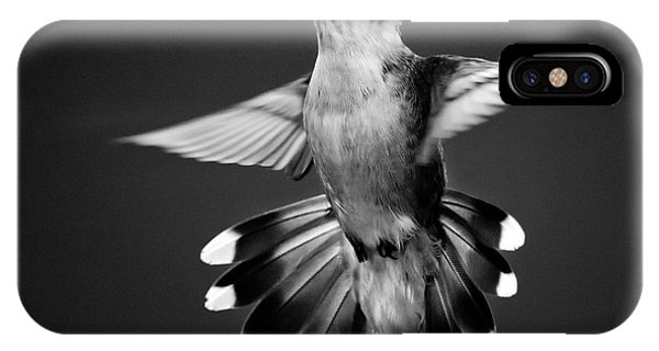 Beautiful Hummingbird iPhone Case - Fantail Hummingbird Square Bw by Christina Rollo