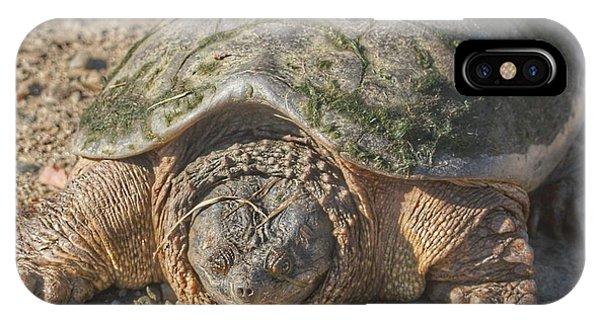 1013 - Fargo Road Turtle IPhone Case