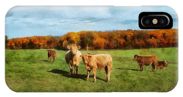 Farm Field And Brown Cows IPhone Case