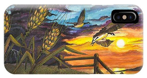 Farm Sunset IPhone Case
