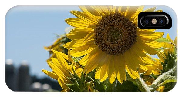 Farm Sunshine IPhone Case