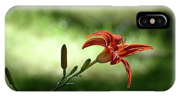 Farmington Lilies 2 IPhone Case