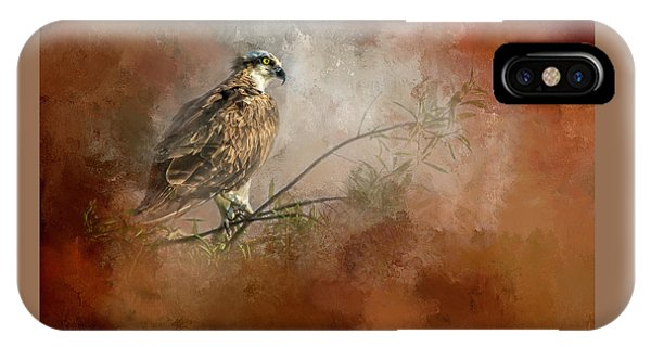Osprey iPhone Case - Farsighted Wisdom by Marvin Spates