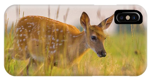 IPhone Case featuring the photograph Fawn In Grasslands by John De Bord