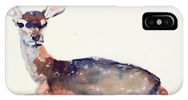 Deer iPhone Case - Fawn by Mark Adlington