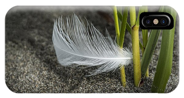 Feather And Beach Grass IPhone Case