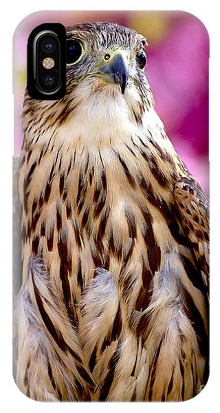 Feathered Wizard IPhone Case
