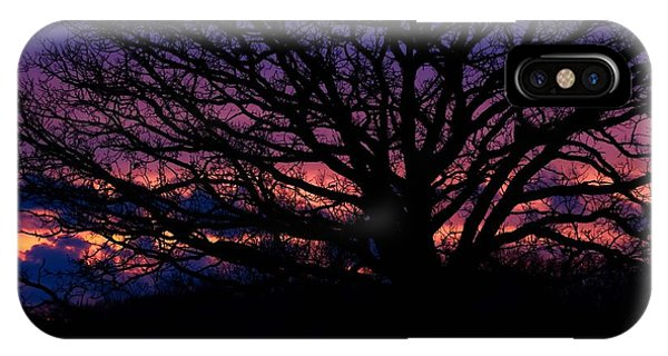 February Sunset IPhone Case