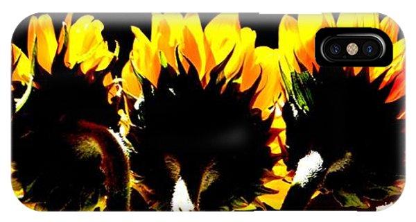 Soaking Up Sun IPhone Case