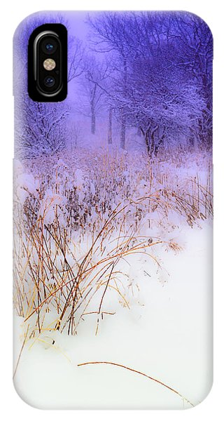 Feel Of Cold Land IPhone Case