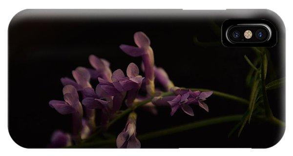 Feeling For The Last Bit Of Sunlight IPhone Case