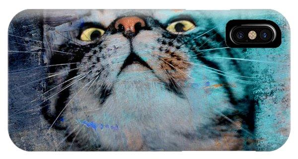 Feline Focus IPhone Case