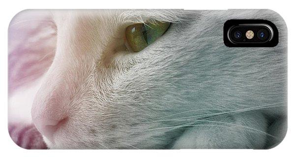 Feline Zen IPhone Case