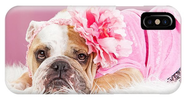 Female Bulldog Wearing Pink Outfit And Flower IPhone Case