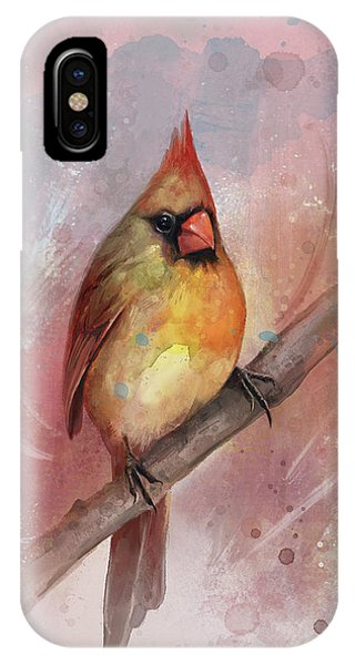Female Cardinal IPhone Case