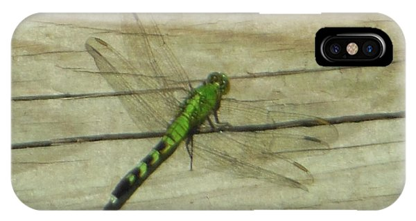 Female Eastern Pondhawk Dragonfly IPhone Case