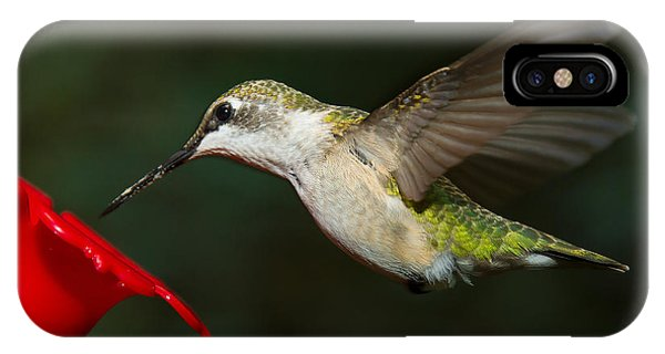 IPhone Case featuring the photograph Female Ruby-troated Hummingbird by Robert L Jackson