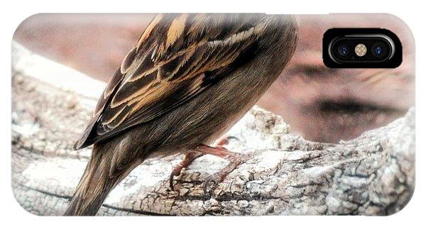 Female Sparrow IPhone Case