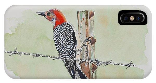 Fence Sitting IPhone Case