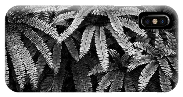 Fern And Shadow IPhone Case