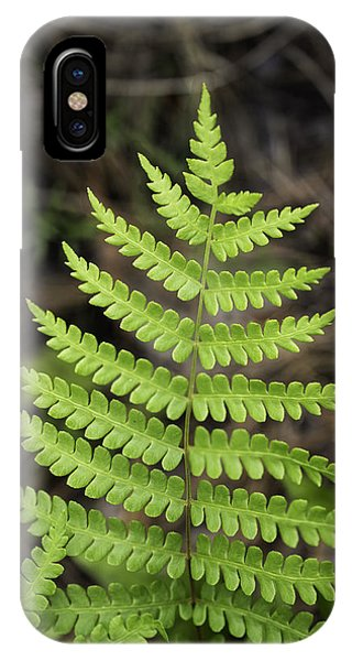 Fern Fron 01 IPhone Case