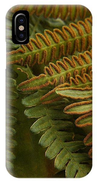 Fern In My Garden IPhone Case