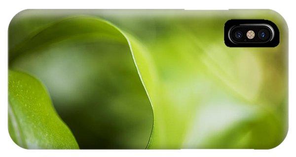 Fern Leaf Macro IPhone Case