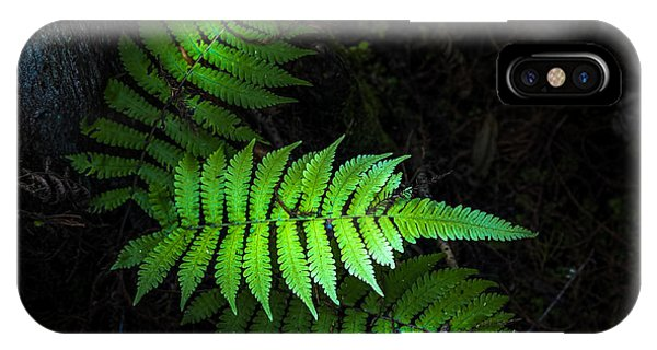 Fern Life IPhone Case