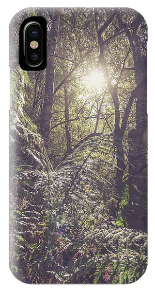Jungle iPhone Case - Ferns And Sunshine by Jorgo Photography - Wall Art Gallery