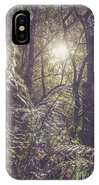 Greenery iPhone Case - Ferns And Sunshine by Jorgo Photography - Wall Art Gallery