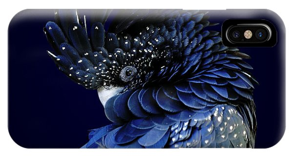 Fibonacci Cockatoo IPhone Case