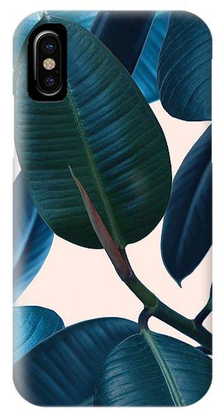 Fall Flowers iPhone Case - Ficus Elastica 2 by Mark Ashkenazi