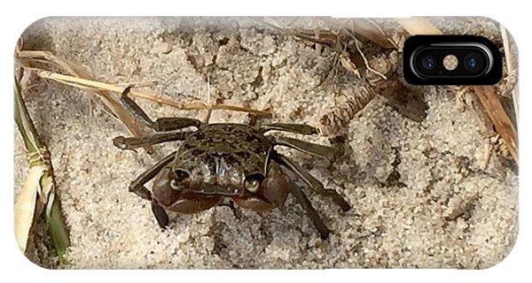 Fiddler Crab IPhone Case