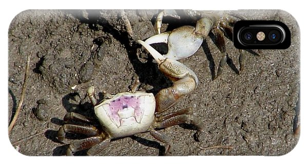 Fiddler Crabs Fighting 2 IPhone Case