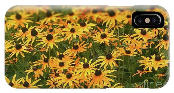 Field Of Black-eyed Susans IPhone Case