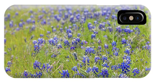 Field Of Blue Bonnet Flowers IPhone Case