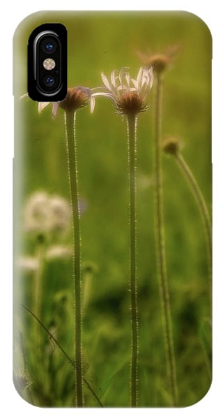Field Of Flowers 3 IPhone Case