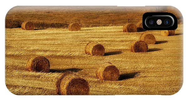 Field Of Gold #1 IPhone Case