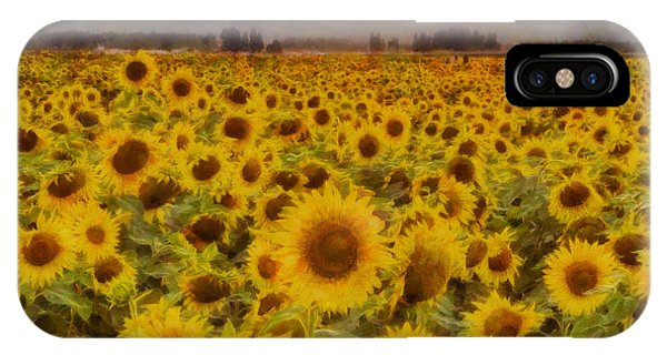 Sunflower iPhone Case - Field Of Sunflowers by Mark Kiver