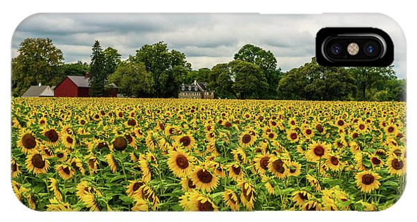 IPhone Case featuring the photograph Field Of Sunshine by Louis Dallara