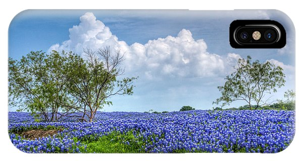 Horticulture iPhone Case - Field Of Texas Bluebonnets by David and Carol Kelly